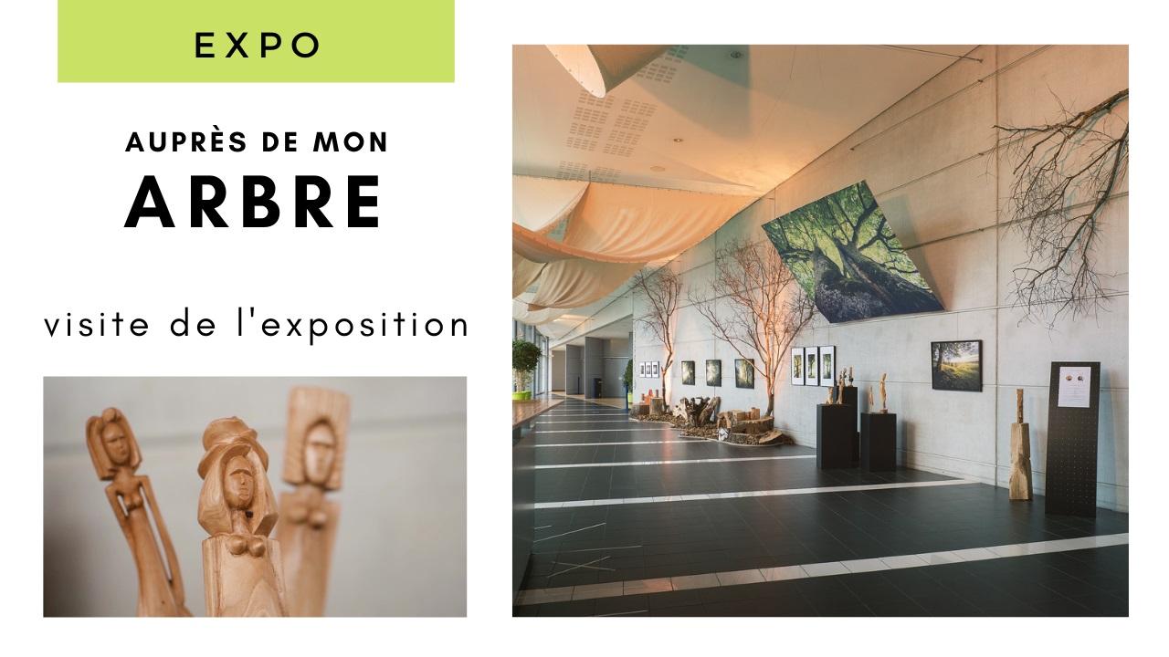 Visite de l'exposition «Auprès de mon arbre»